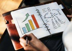 מקדם אתרים אורגני לעסקים